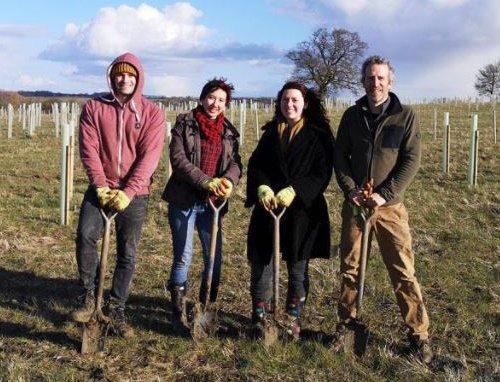 shovels digging charity trees planting