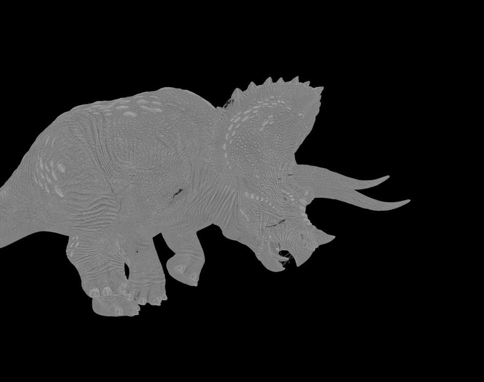 Triceratopsby Renato Gregorio Scicchitano