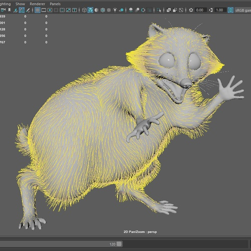raccoon xgen 3d model